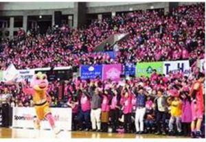 バスケBリーグ 秋田 B1の壁(下)運営