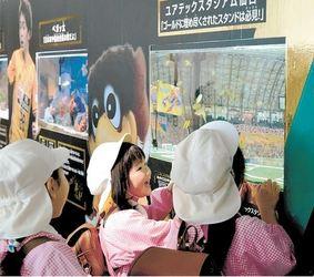 J1仙台 うみの杜水族館とコラボ企画