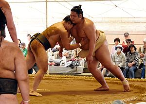 大相撲 錦木、精力的に一番一番 伊勢ノ海部屋が盛岡合宿