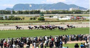 馬駆ける夏、ファン歓声 函館でJRA北海道シリーズ開幕